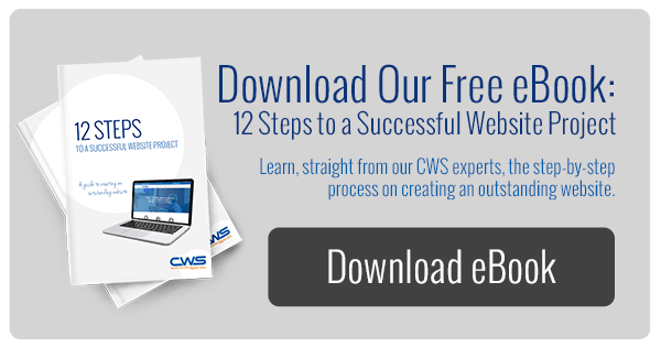 12 Steps to a Successful Website Project